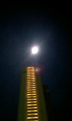 月がとっても蒼いから〜♪